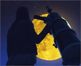 Link observatorio